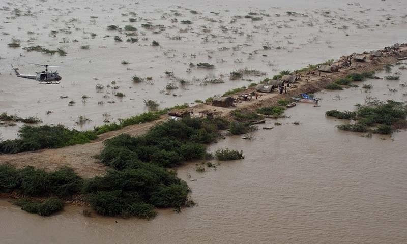 Gujarat floods: 30% of sown cotton, groundnut damaged